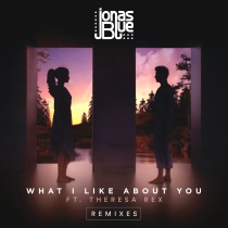 What I Like About You (Remixes)